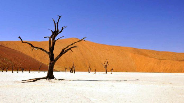 Namibia pustynia