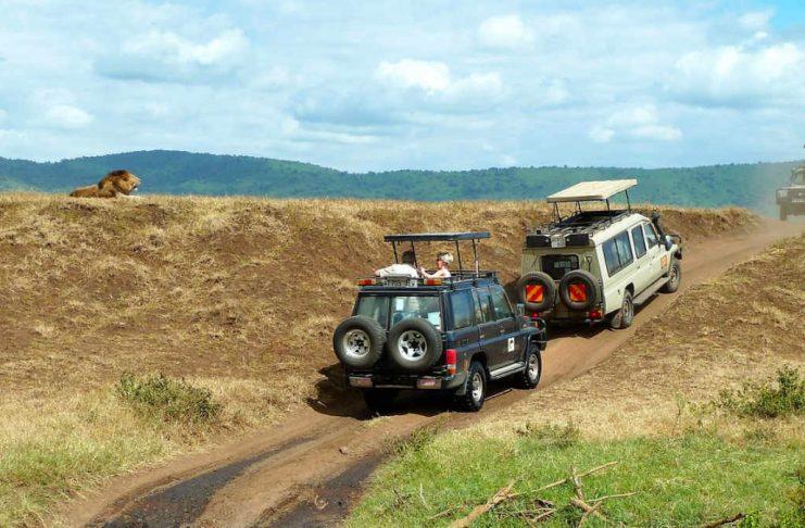 Afryka Jeep Safari