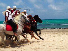 Tunisia konie piraci